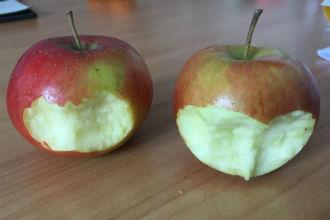Verboden vruchten